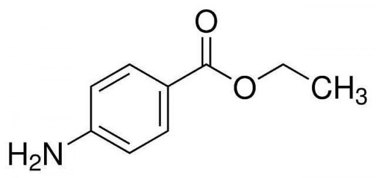 butanol essay