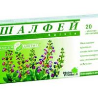 «Cвященная трава» шалфей вернет здоровье десен