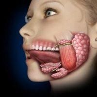 Как правильно вылечить слюннокаменную болезнь
